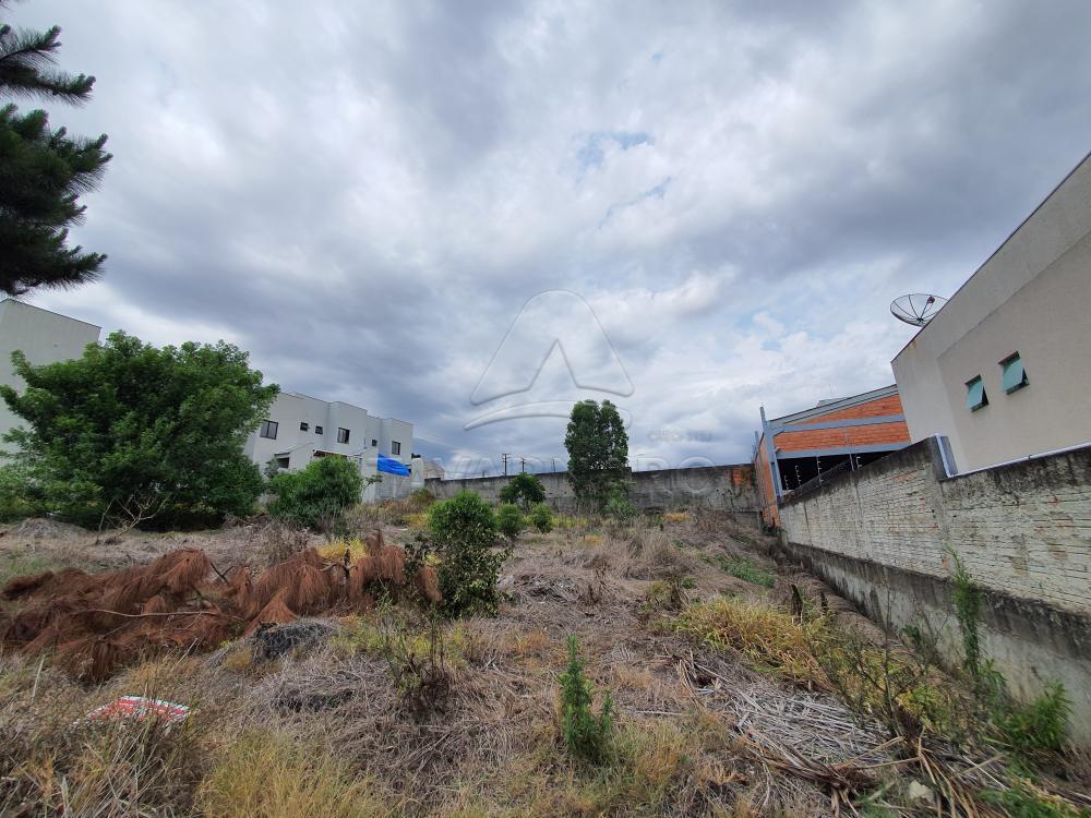 Comprar Terreno / Padrão em Ponta Grossa apenas R$ 270.000,00 - Foto 1