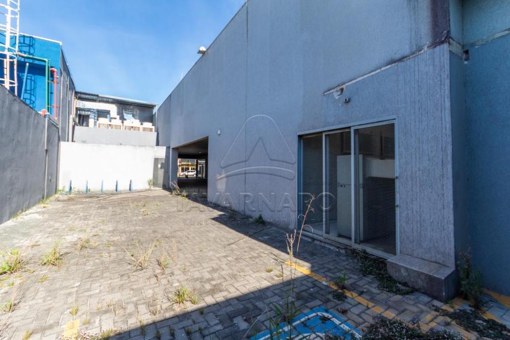 Comprar Comercial / Loja em Ponta Grossa - Foto 39