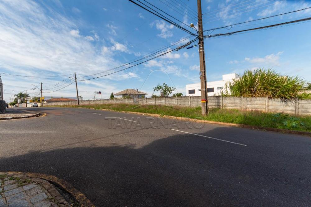 Comprar Comercial / Terreno em Ponta Grossa apenas R$ 800.000,00 - Foto 4