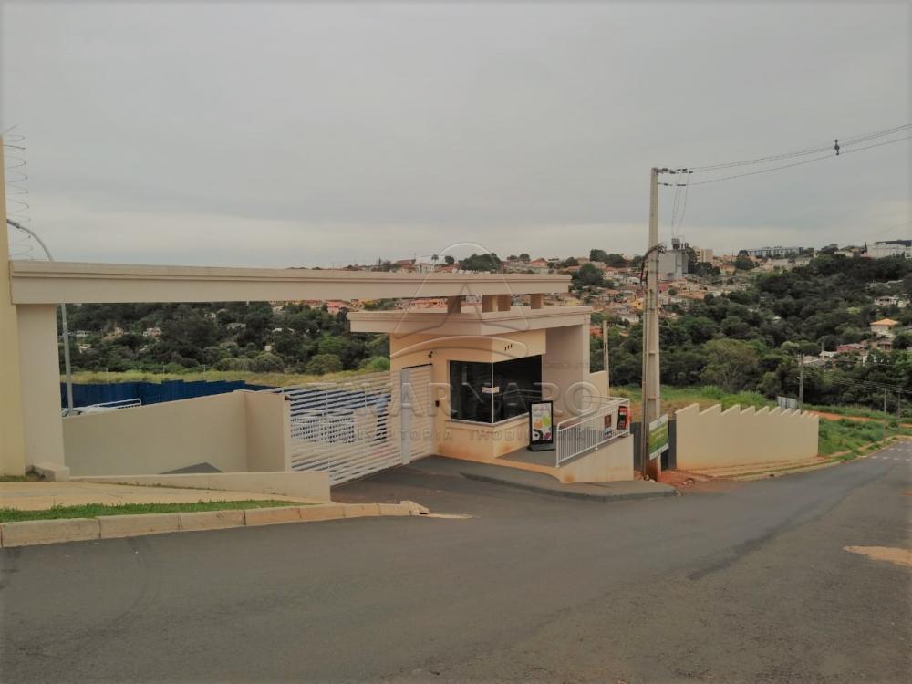 Alugar Apartamento / Padrão em Ponta Grossa apenas R$ 550,00 - Foto 1
