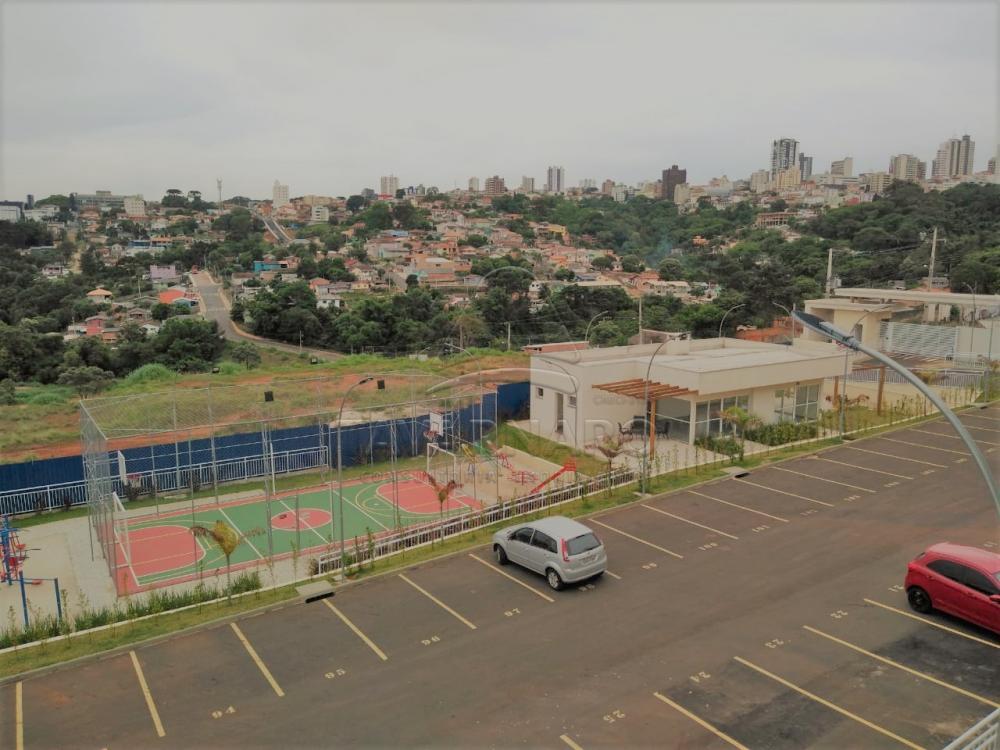 Alugar Apartamento / Padrão em Ponta Grossa apenas R$ 550,00 - Foto 6