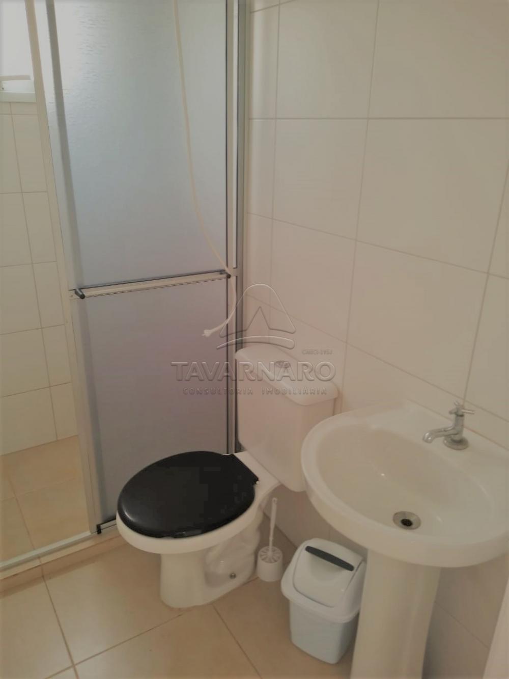 Alugar Apartamento / Padrão em Ponta Grossa apenas R$ 550,00 - Foto 12