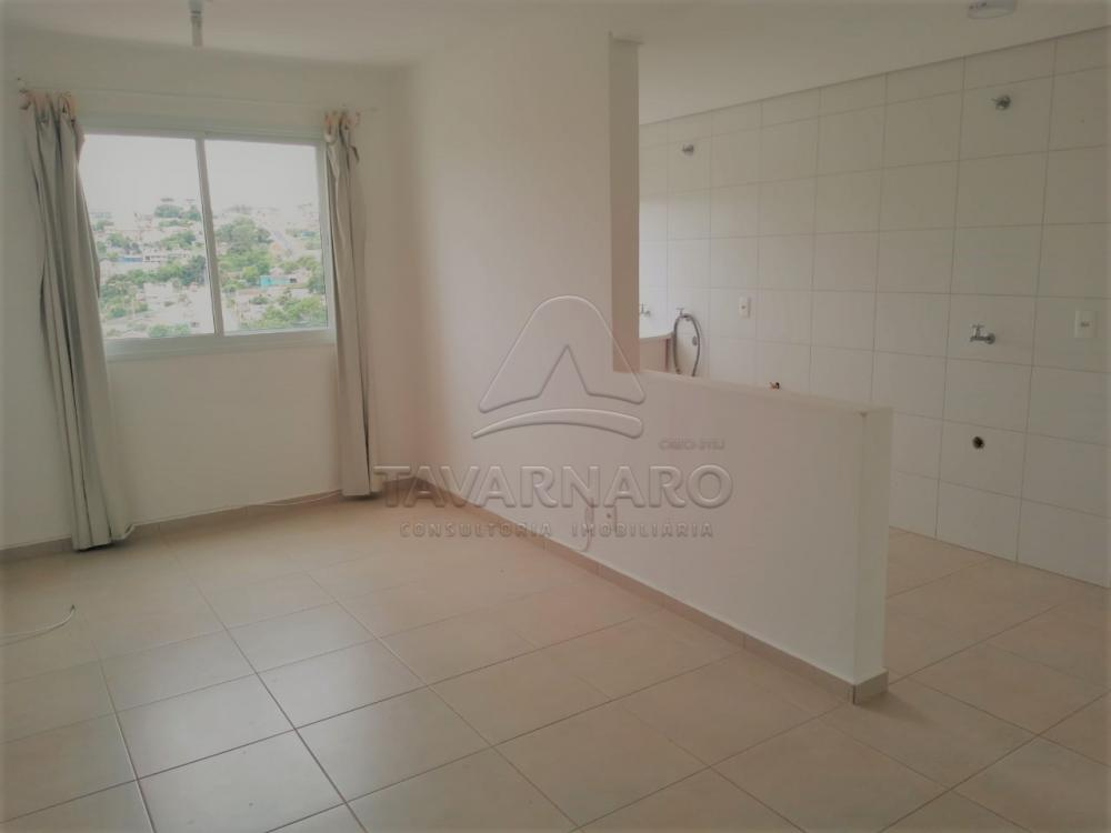 Alugar Apartamento / Padrão em Ponta Grossa apenas R$ 550,00 - Foto 18