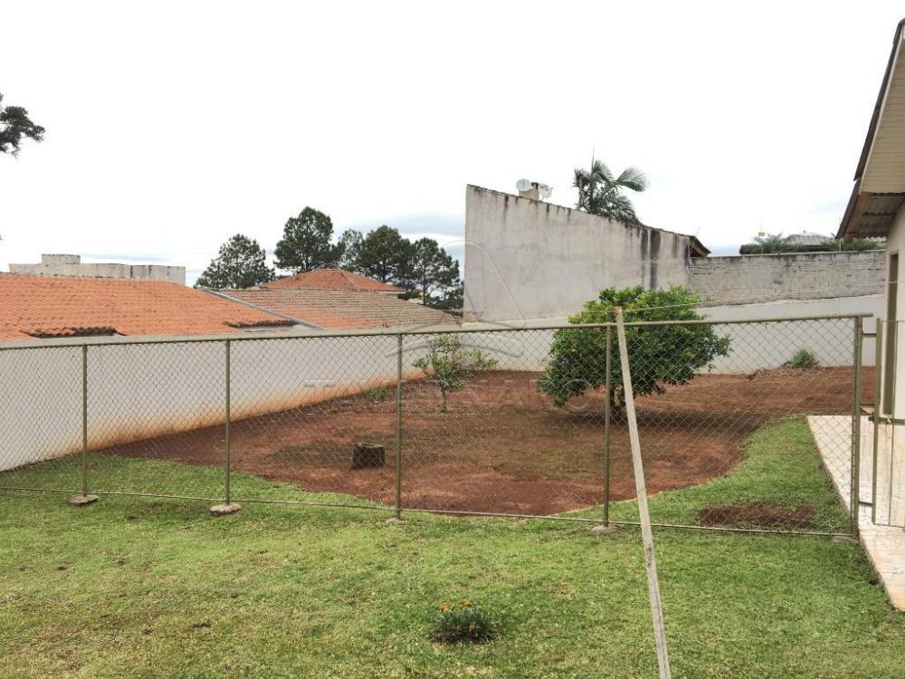 Comprar Casa / Padrão em Ponta Grossa apenas R$ 500.000,00 - Foto 9