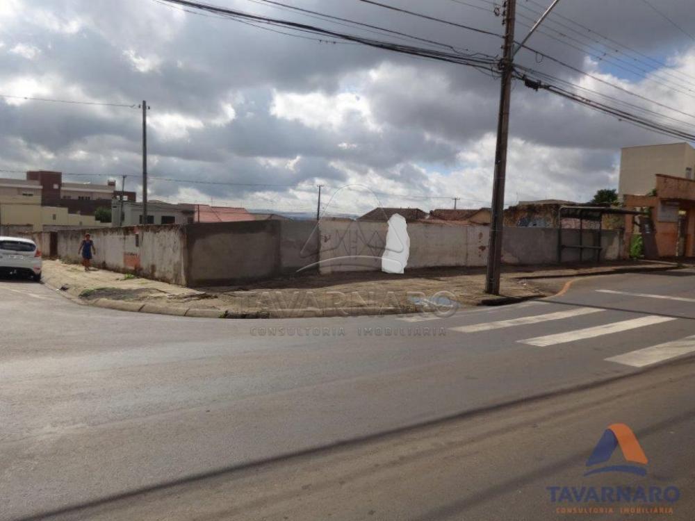 Comprar Comercial / Terreno em Ponta Grossa apenas R$ 2.800.000,00 - Foto 1