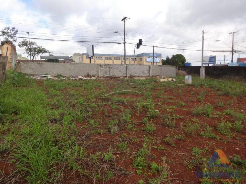 Comprar Comercial / Terreno em Ponta Grossa apenas R$ 2.800.000,00 - Foto 2