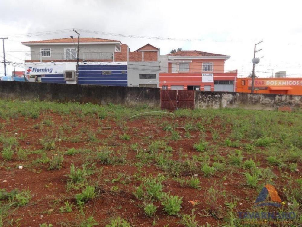Comprar Comercial / Terreno em Ponta Grossa apenas R$ 2.800.000,00 - Foto 3