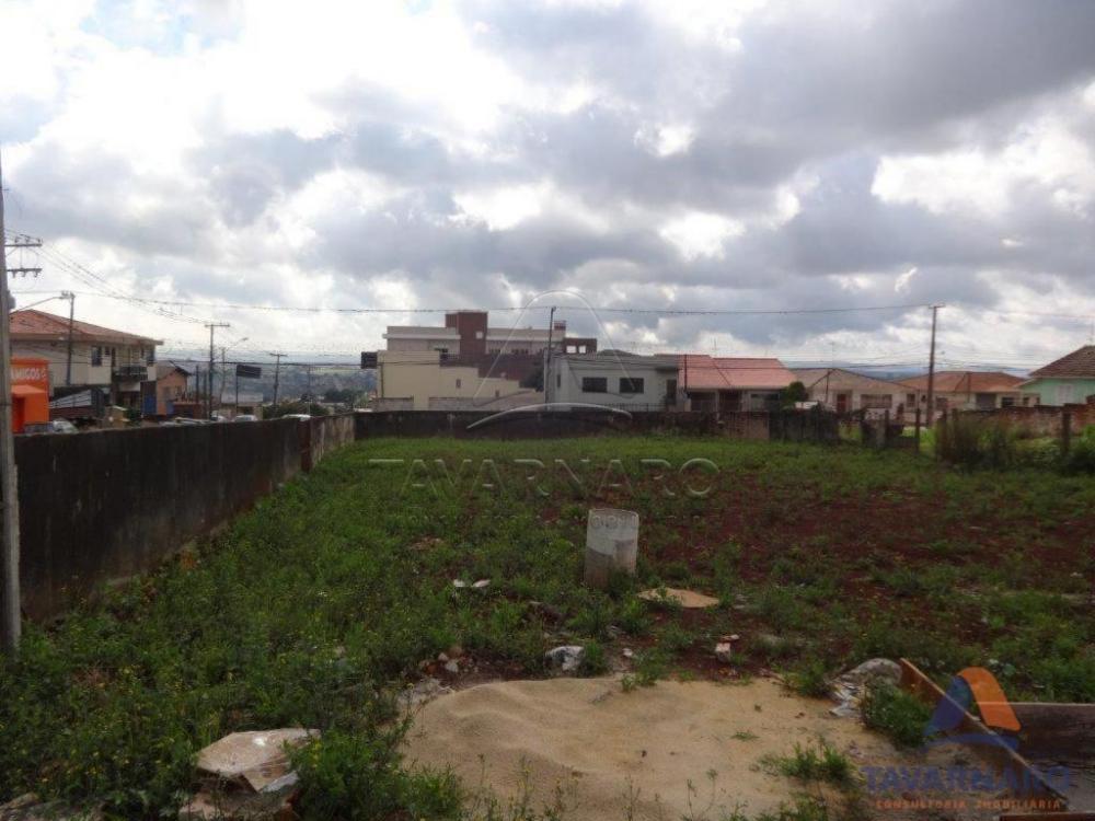 Comprar Comercial / Terreno em Ponta Grossa apenas R$ 2.800.000,00 - Foto 4