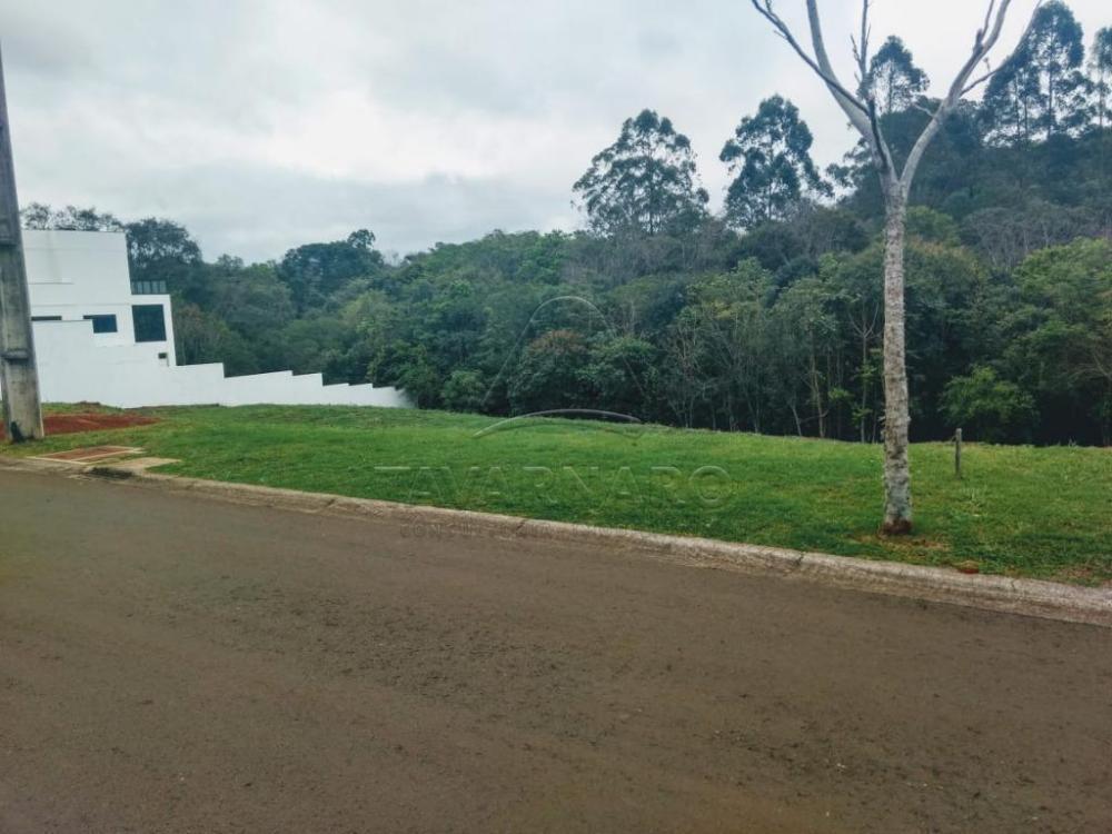 Comprar Terreno / Condomínio em Ponta Grossa apenas R$ 342.000,00 - Foto 1