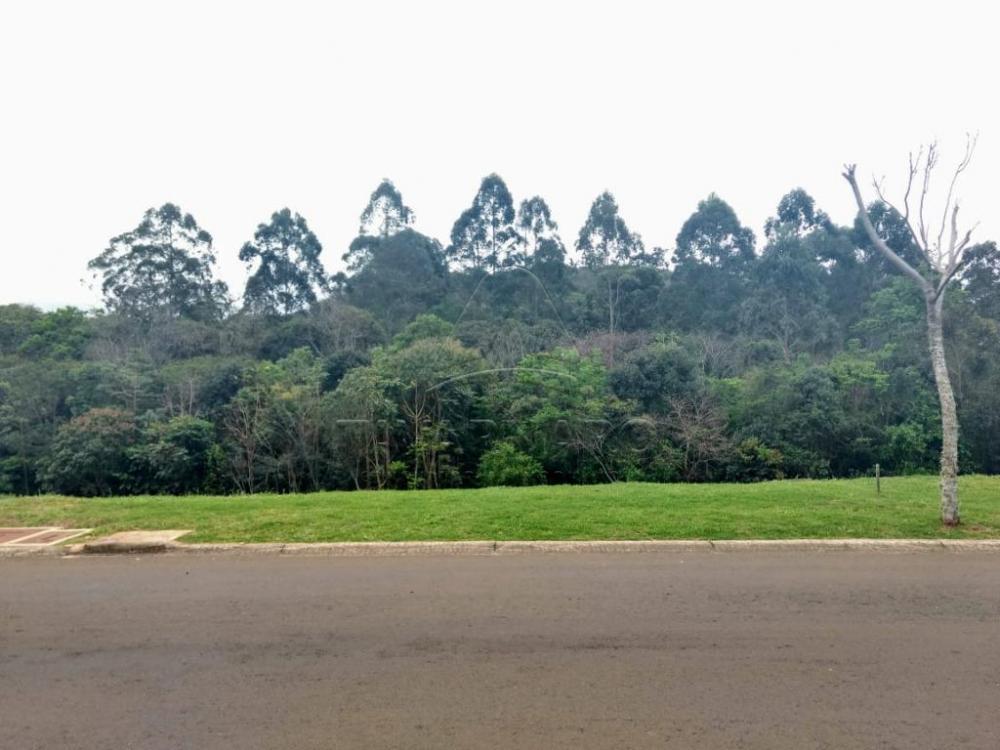 Comprar Terreno / Condomínio em Ponta Grossa apenas R$ 342.000,00 - Foto 2