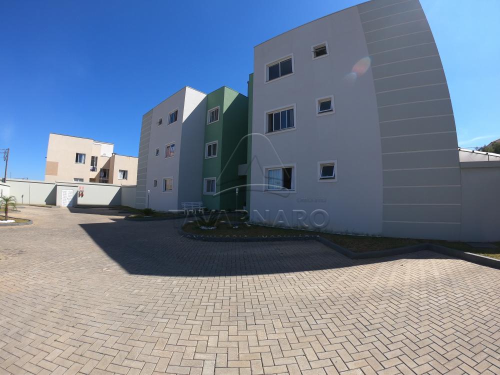 Alugar Apartamento / Padrão em Ponta Grossa apenas R$ 890,00 - Foto 14