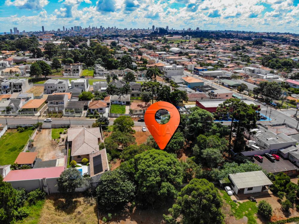 Comprar Comercial / Terreno em Ponta Grossa apenas R$ 1.200.000,00 - Foto 7
