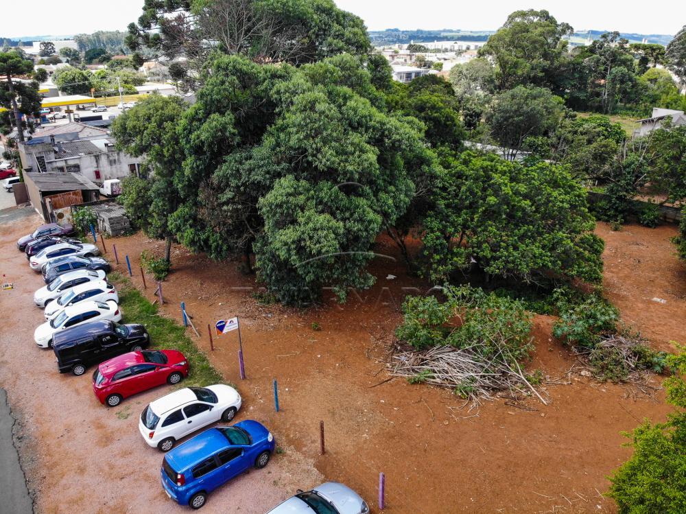 Comprar Comercial / Terreno em Ponta Grossa apenas R$ 1.200.000,00 - Foto 8