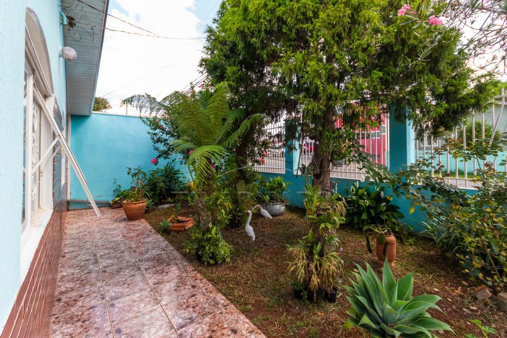 Comprar Casa / Padrão em Ponta Grossa apenas R$ 300.000,00 - Foto 3