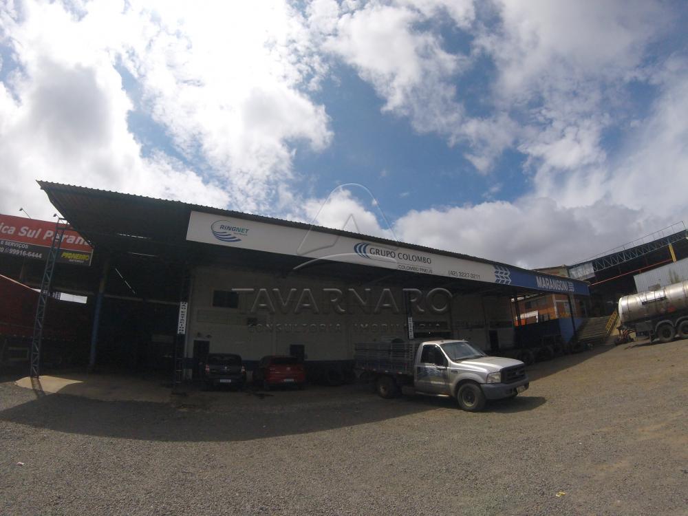 Alugar Comercial / Barracão em Ponta Grossa R$ 9.500,00 - Foto 5