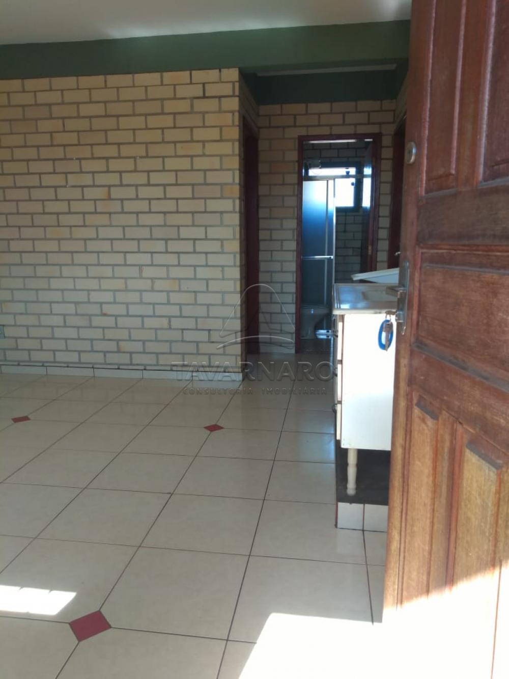 Alugar Apartamento / Padrão em Ponta Grossa apenas R$ 480,00 - Foto 5
