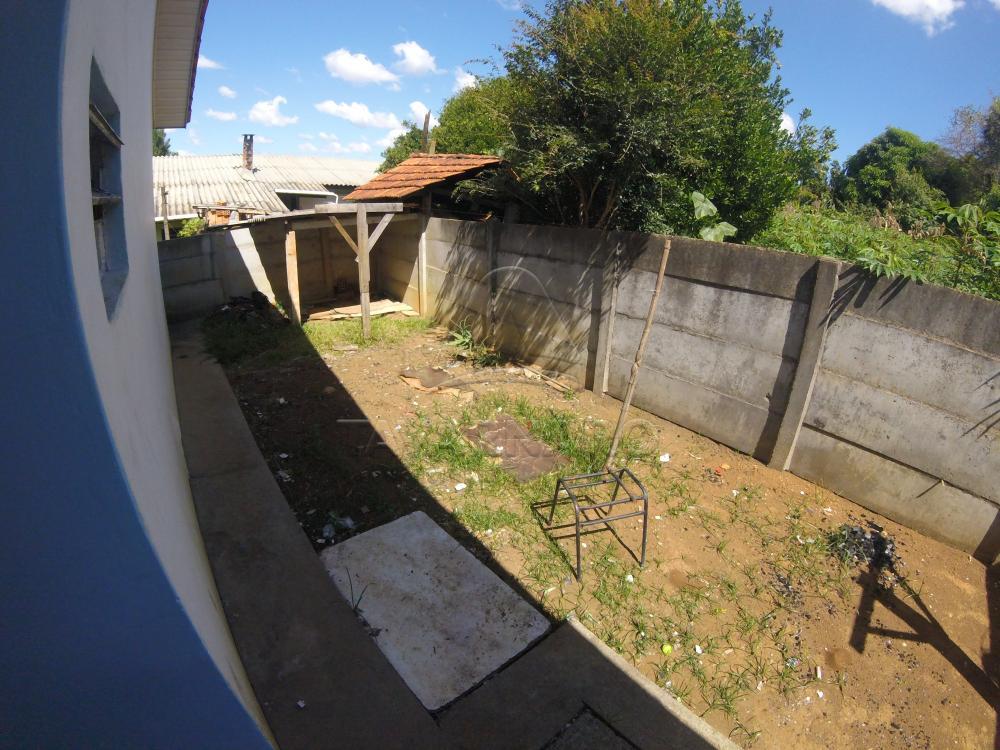 Alugar Casa / Padrão em Ponta Grossa apenas R$ 450,00 - Foto 8