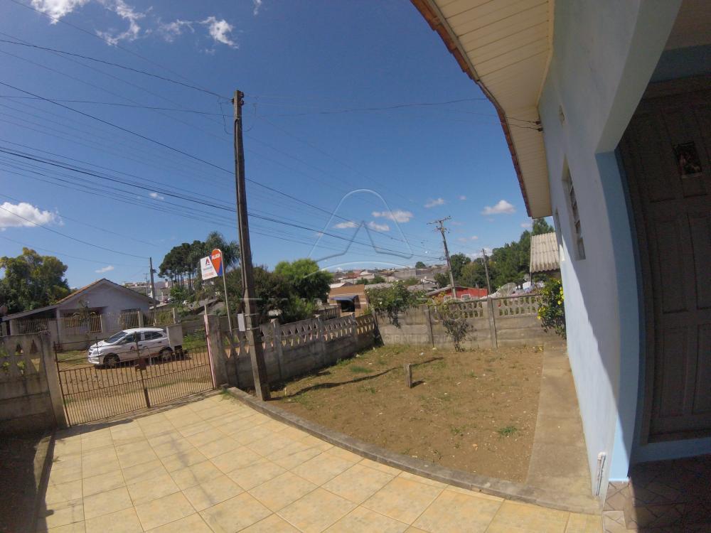 Alugar Casa / Padrão em Ponta Grossa apenas R$ 450,00 - Foto 9