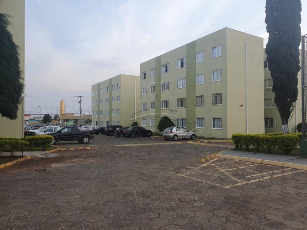 Alugar Apartamento / Padrão em Ponta Grossa R$ 500,00 - Foto 15