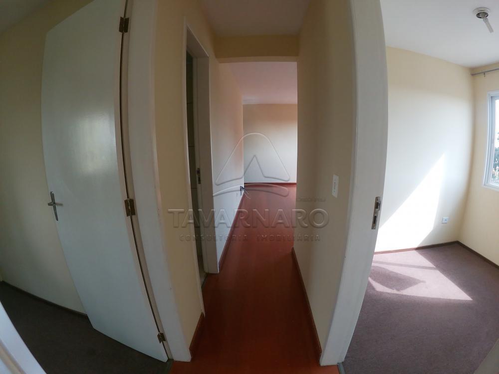 Alugar Apartamento / Padrão em Ponta Grossa R$ 500,00 - Foto 12