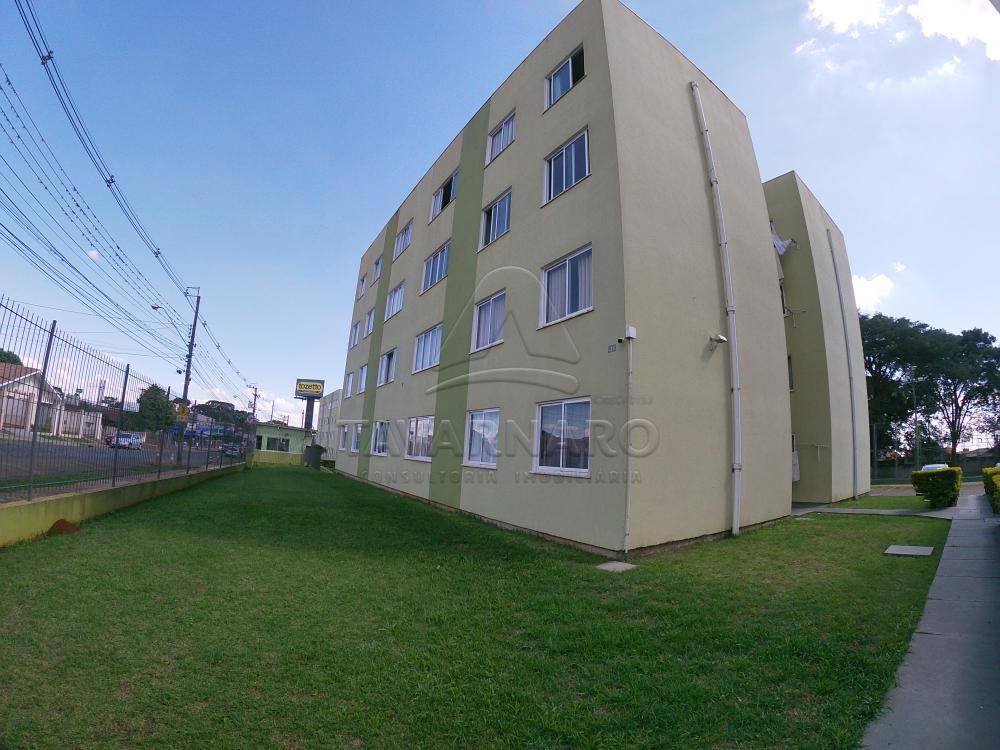 Alugar Apartamento / Padrão em Ponta Grossa R$ 500,00 - Foto 1