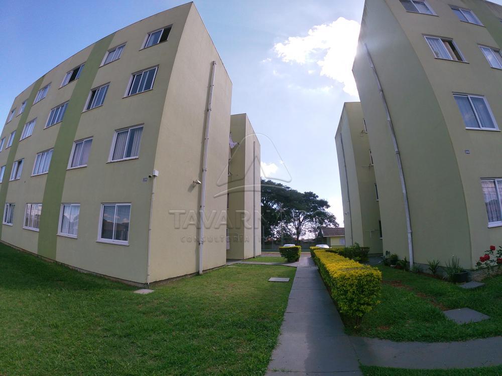 Alugar Apartamento / Padrão em Ponta Grossa R$ 500,00 - Foto 3