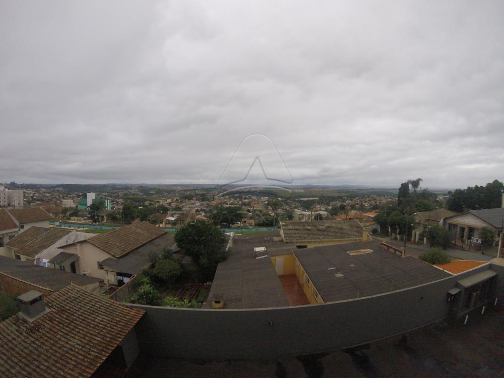Alugar Apartamento / Padrão em Ponta Grossa apenas R$ 1.300,00 - Foto 13