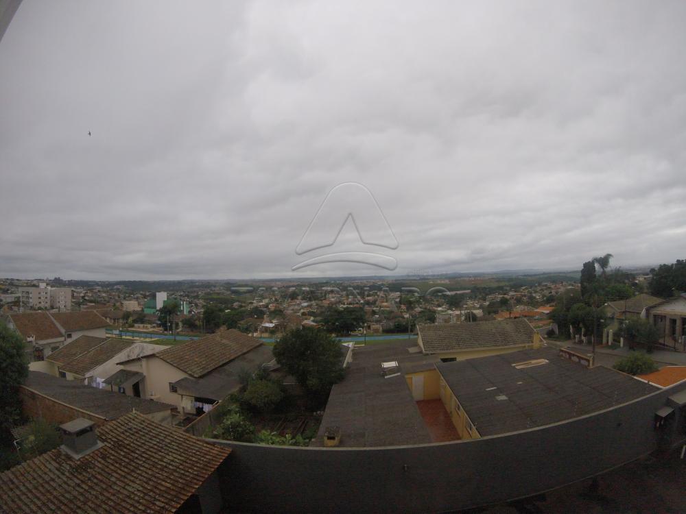 Alugar Apartamento / Padrão em Ponta Grossa apenas R$ 1.300,00 - Foto 14