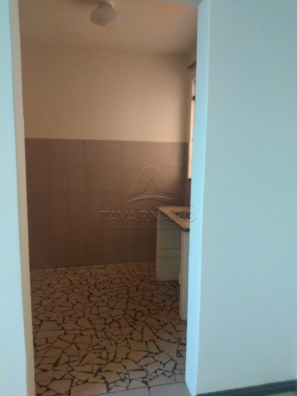 Alugar Apartamento / Kitinete em Ponta Grossa apenas R$ 330,00 - Foto 5