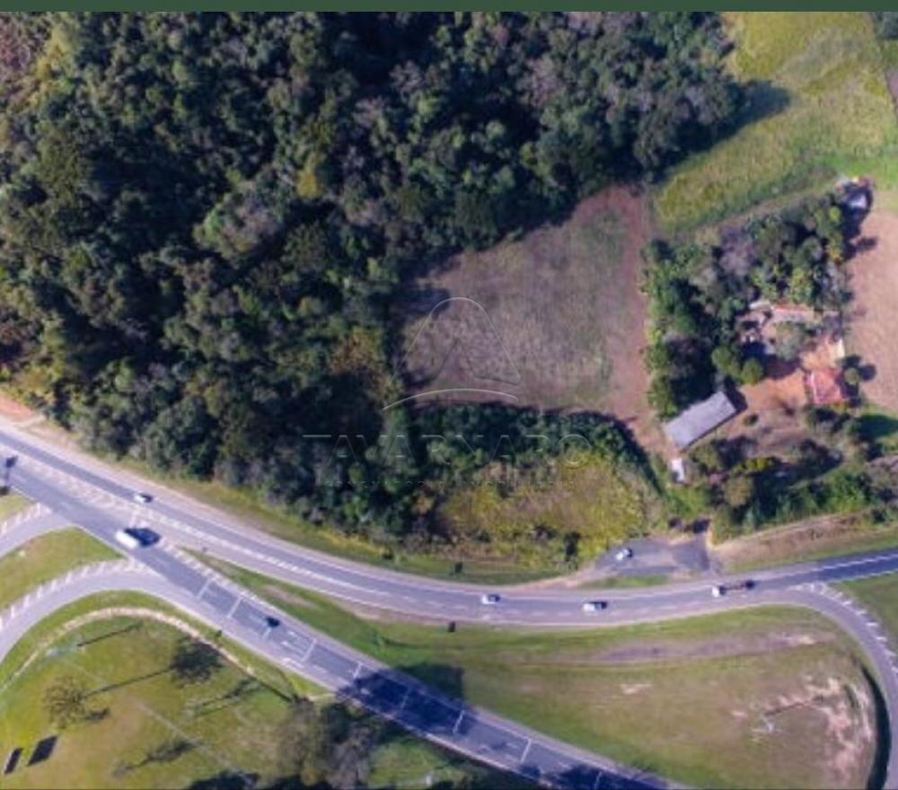 Comprar Terreno / Área em Ponta Grossa apenas R$ 1.600.000,00 - Foto 1