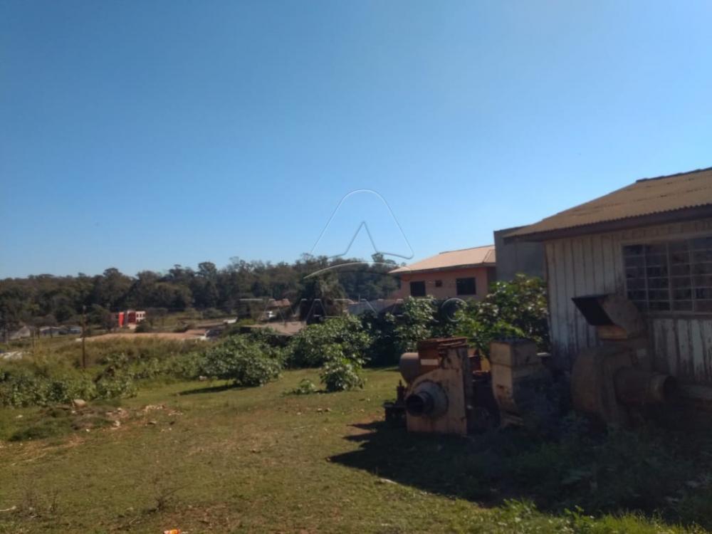 Comprar Comercial / Terreno em Ponta Grossa - Foto 2