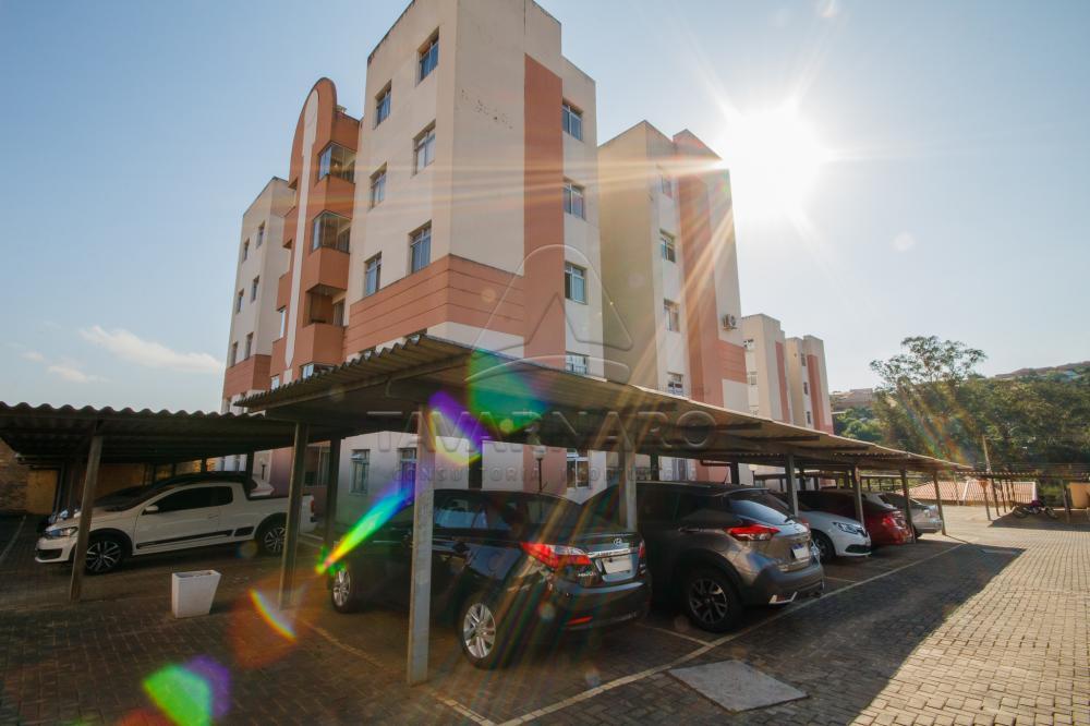Alugar Apartamento / Padrão em Ponta Grossa apenas R$ 800,00 - Foto 14