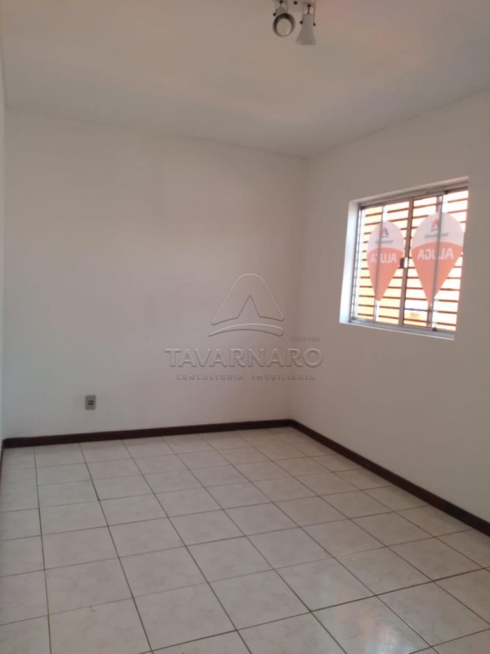 Alugar Apartamento / Kitinete em Ponta Grossa R$ 550,00 - Foto 1
