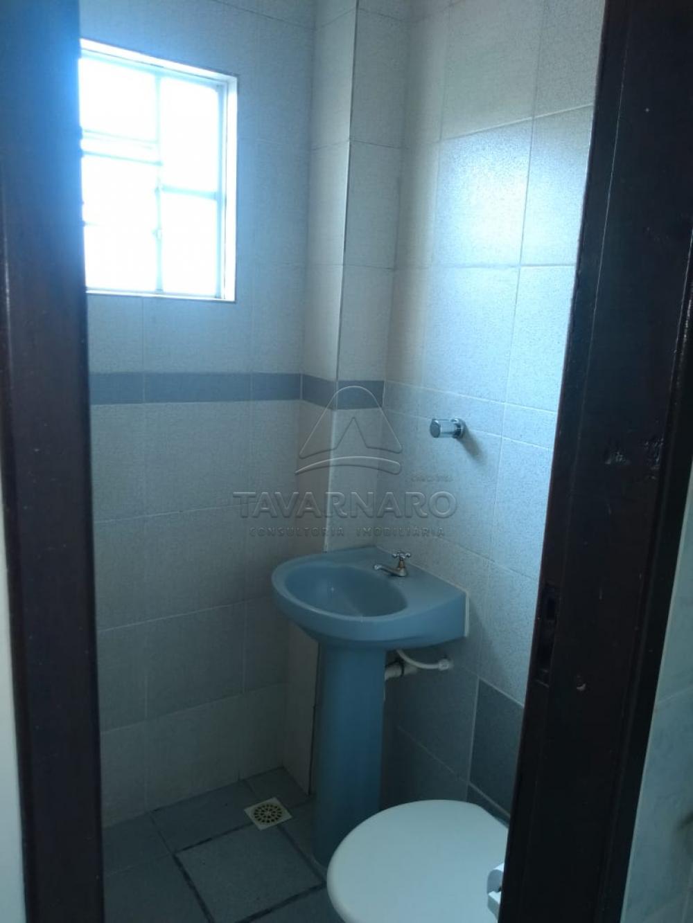 Alugar Apartamento / Kitinete em Ponta Grossa R$ 550,00 - Foto 3