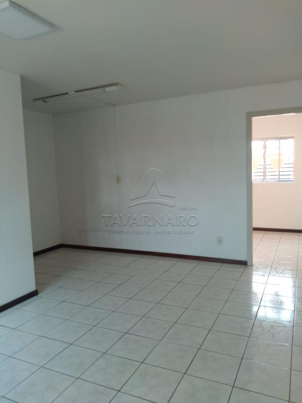 Alugar Apartamento / Kitinete em Ponta Grossa R$ 550,00 - Foto 4