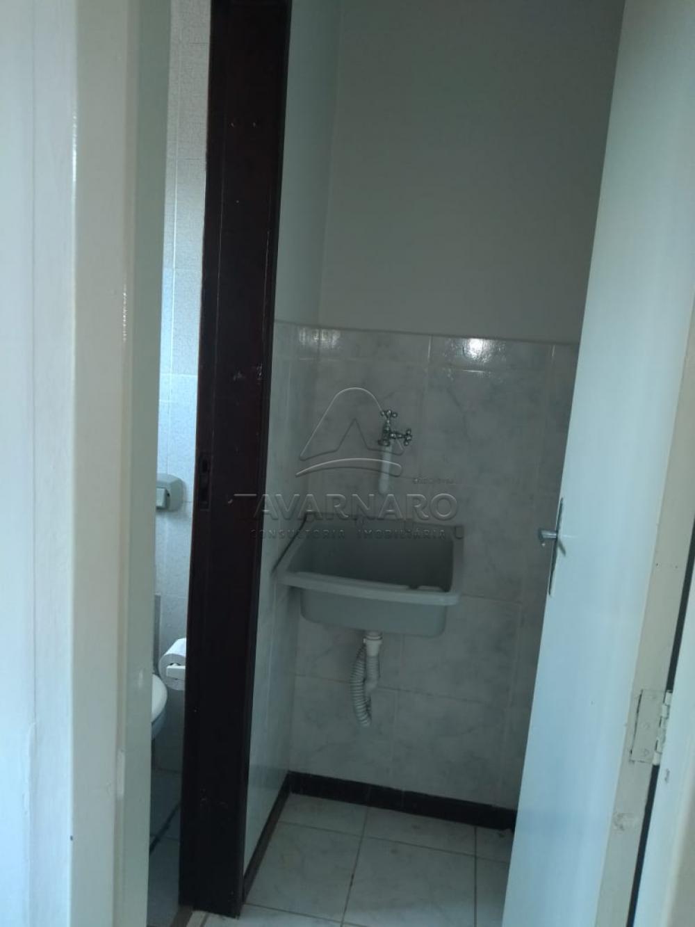 Alugar Apartamento / Kitinete em Ponta Grossa R$ 550,00 - Foto 5