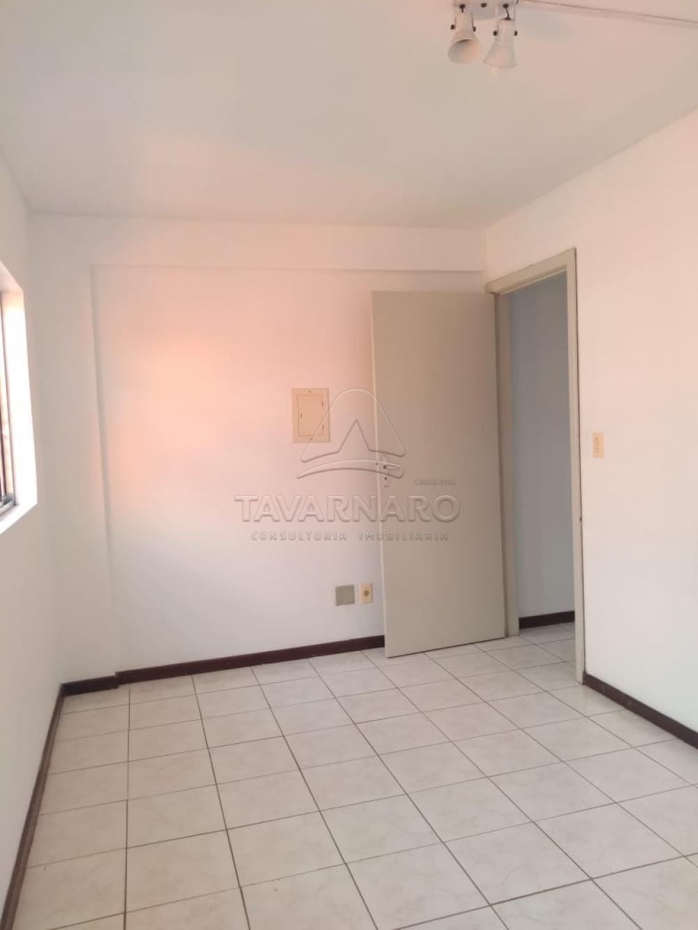 Alugar Apartamento / Kitinete em Ponta Grossa R$ 550,00 - Foto 8