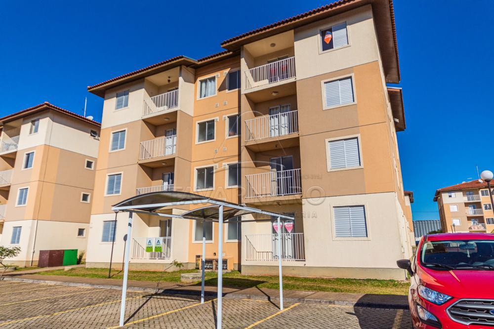 Alugar Apartamento / Padrão em Ponta Grossa apenas R$ 700,00 - Foto 1