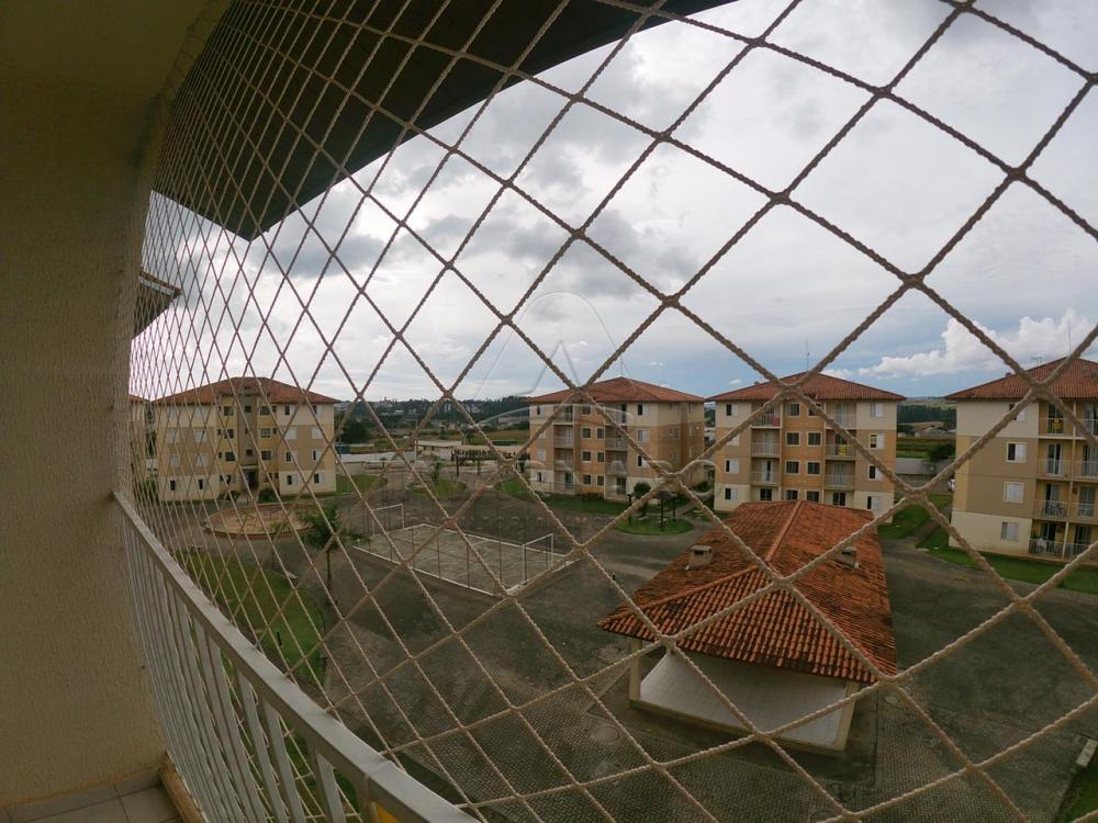 Alugar Apartamento / Padrão em Ponta Grossa apenas R$ 700,00 - Foto 10
