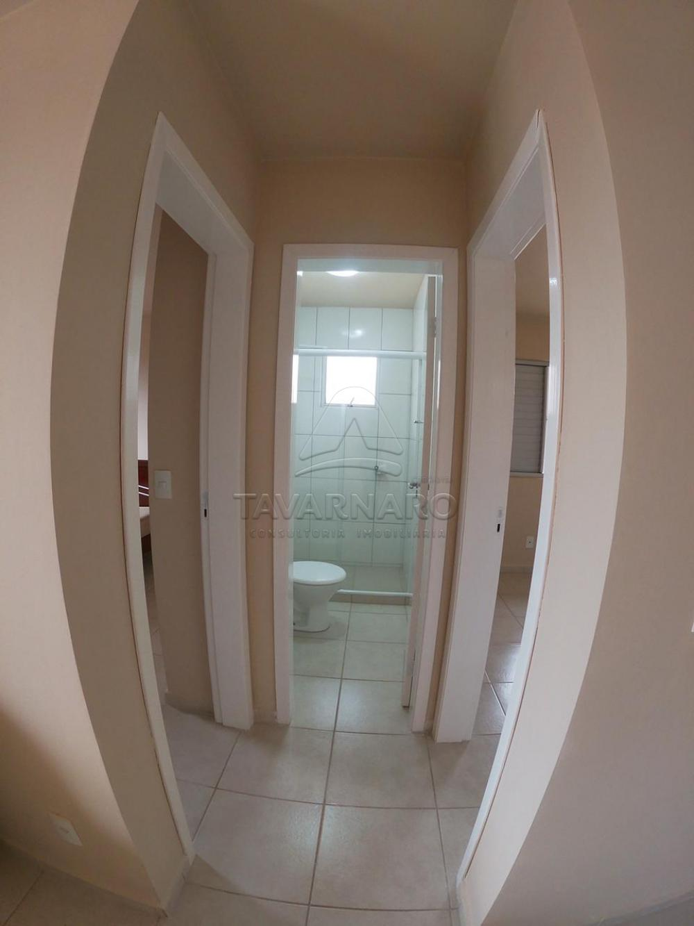 Alugar Apartamento / Padrão em Ponta Grossa apenas R$ 700,00 - Foto 11