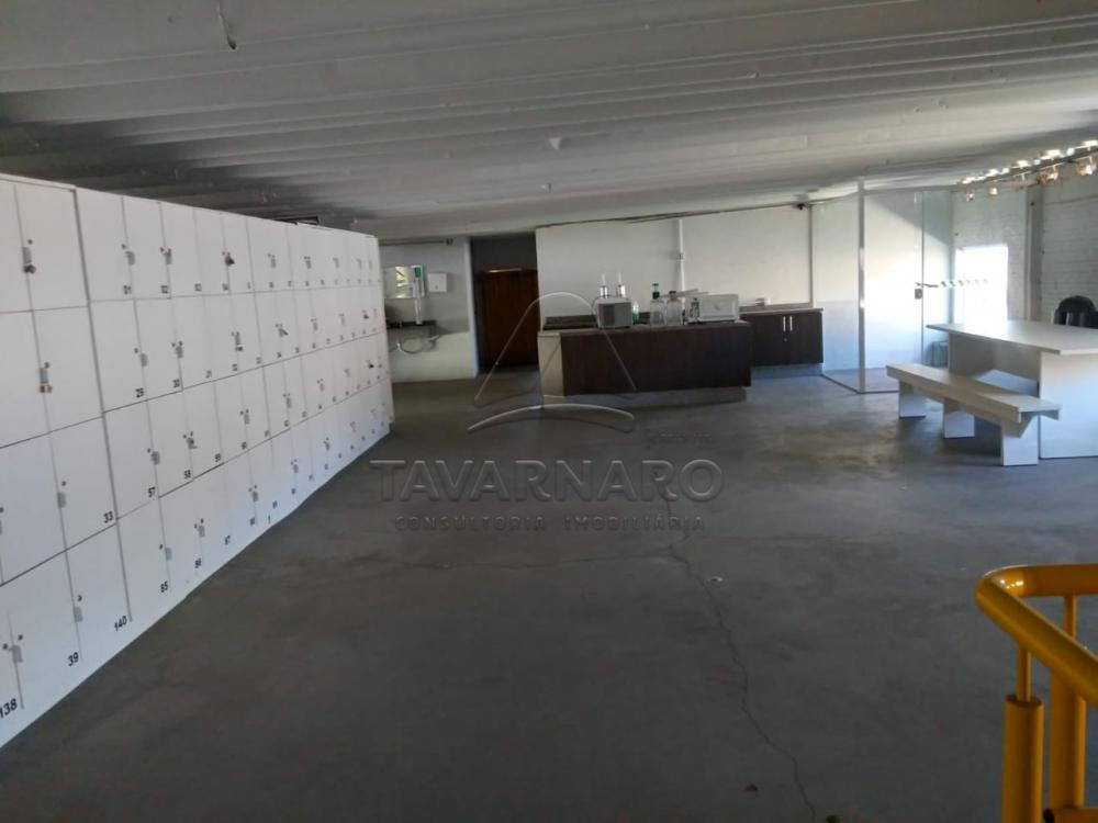 Alugar Comercial / Barracão em Ponta Grossa R$ 8.000,00 - Foto 13