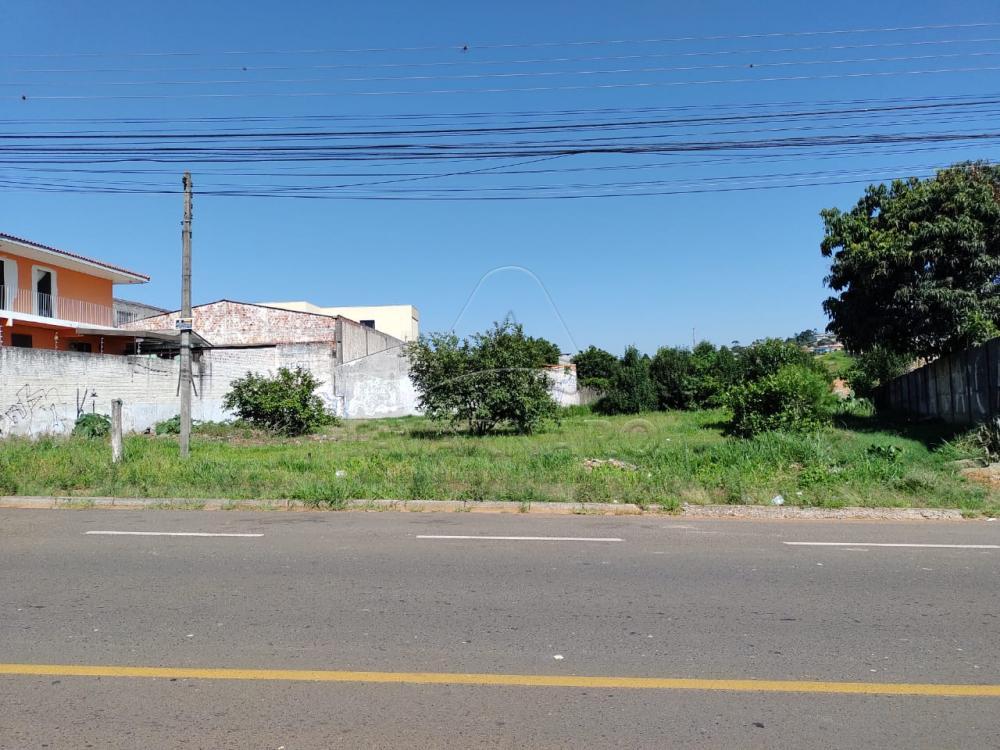 Comprar Comercial / Terreno em Ponta Grossa - Foto 1