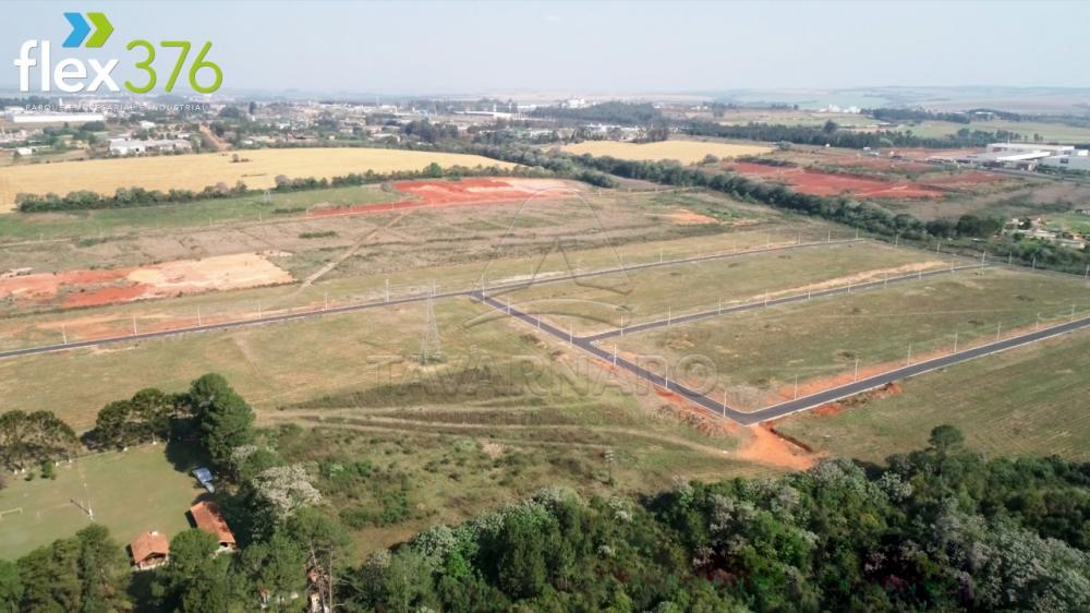Comprar Terreno / Condomínio em Ponta Grossa R$ 599.355,40 - Foto 3