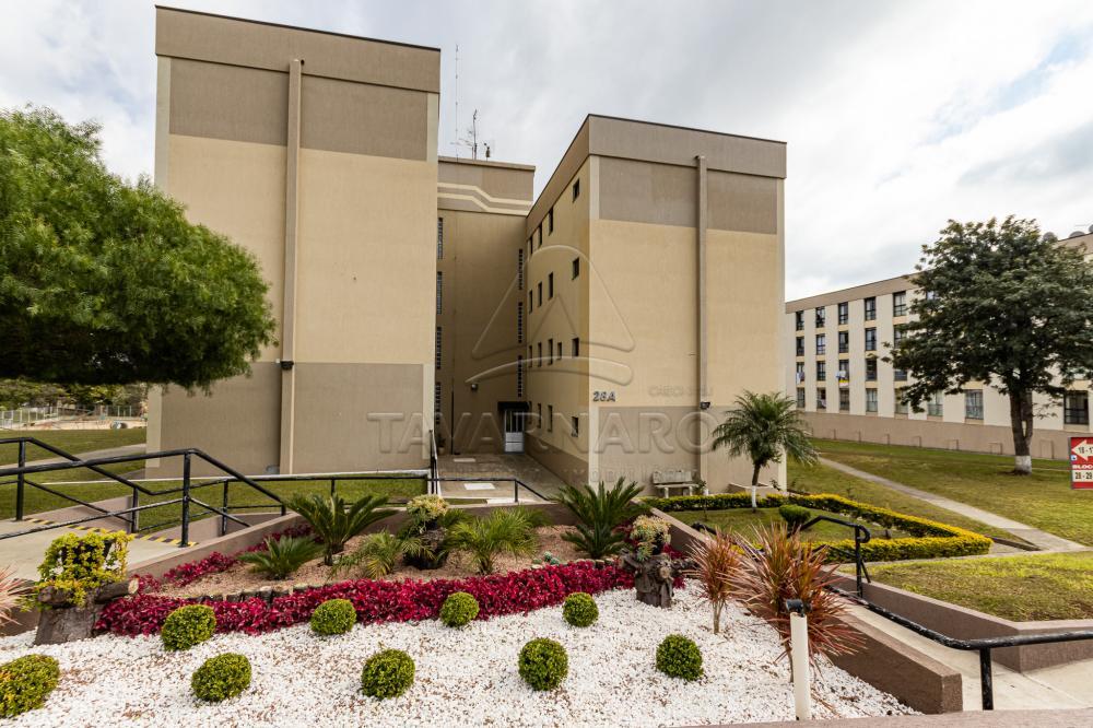 Comprar Apartamento / Padrão em Ponta Grossa R$ 130.000,00 - Foto 1