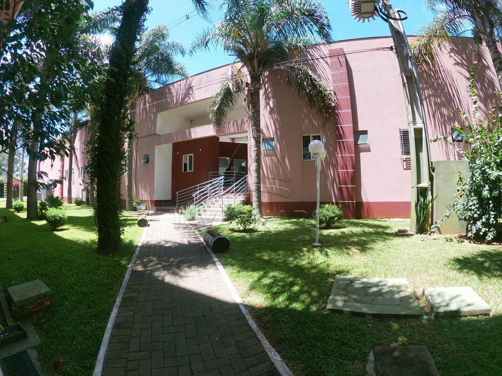 Alugar Apartamento / Kitinete em Ponta Grossa R$ 450,00 - Foto 15
