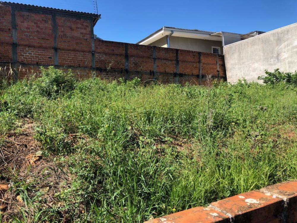 Comprar Casa / Padrão em Ponta Grossa R$ 300.000,00 - Foto 25
