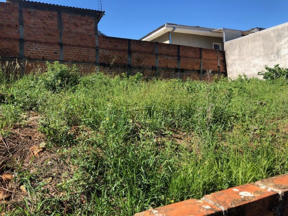 Comprar Casa / Padrão em Ponta Grossa R$ 300.000,00 - Foto 26