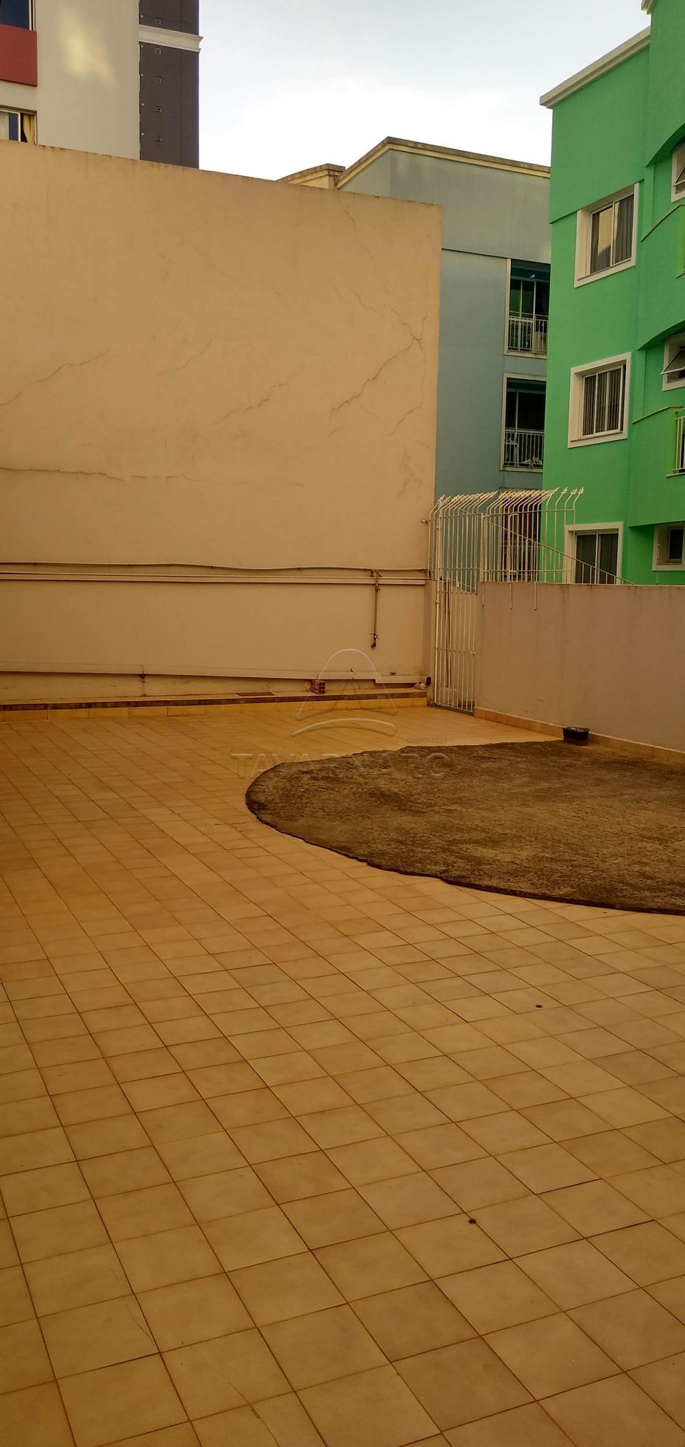 Alugar Apartamento / Padrão em Ponta Grossa R$ 850,00 - Foto 13