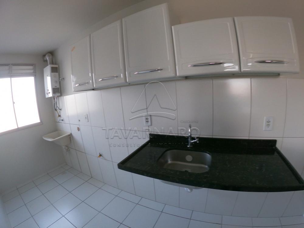 Alugar Apartamento / Padrão em Ponta Grossa R$ 550,00 - Foto 3