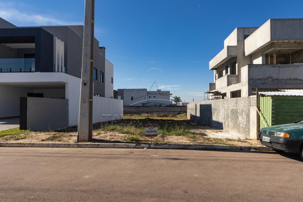 Comprar Terreno / Condomínio em Ponta Grossa R$ 290.000,00 - Foto 3
